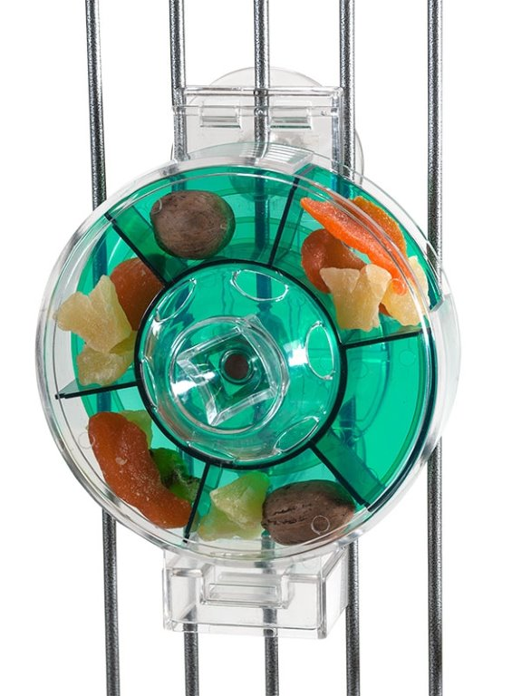 גלגל מזונות ירוק
